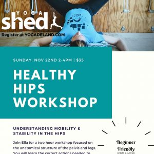 Healthy Hips Workshop