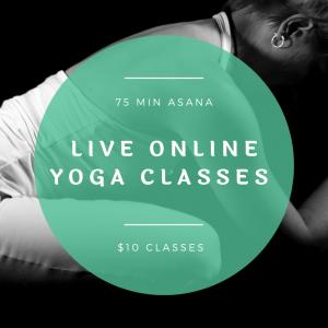 Live Online Yoga Class